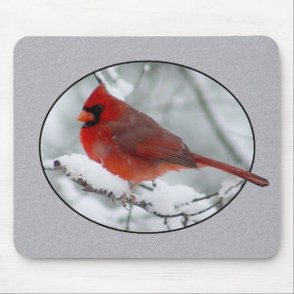 Red Cardinal in the Snow Mousepad 2