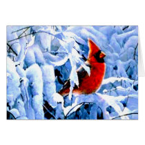 Red Cardinal In the Winter Snow Card