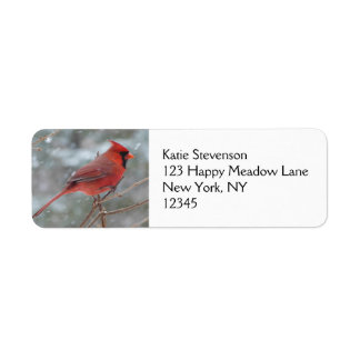 Red cardinal in Winter Return Address Label