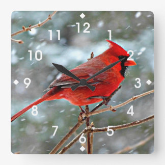 Red Cardinal in Winter Snow Square Wall Clock