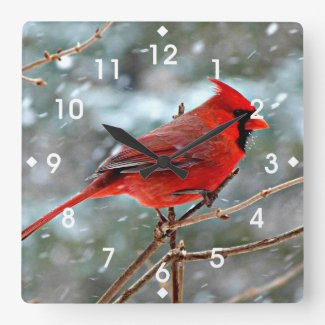 Red Cardinal in Winter Snow Square Wallclocks