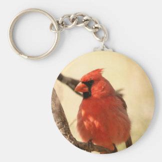 Red Cardinal  Keychain