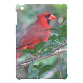 Red Cardinal Male Bird Case For The iPad Mini