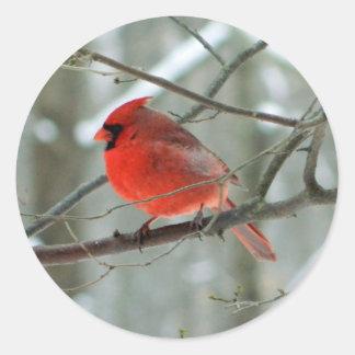 Red Cardinal (Male) Sticker