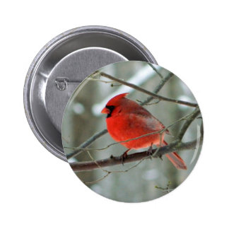 Red Cardinal (Male) Wildlife Button