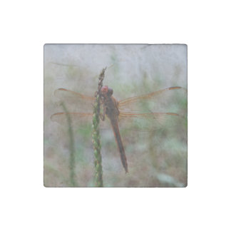 Red Cardinal Meadowhawk Dragonfly Stone Magnet