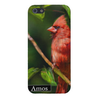 Red Cardinal Painting iPhone SE/5/5s Cover