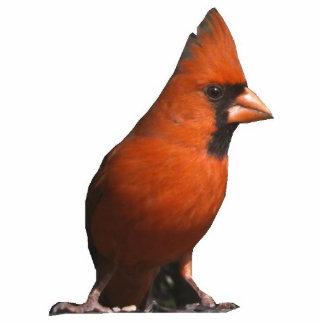 Red Cardinal Photo Sculpture