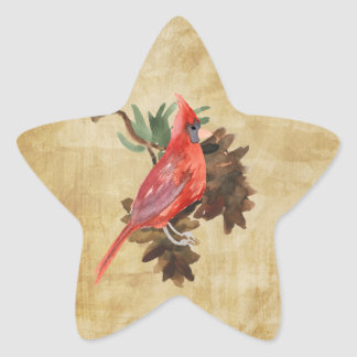 Red Cardinal Pine Cones Holiday Star Stickers