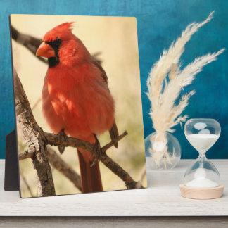 Red Cardinal  Plaque