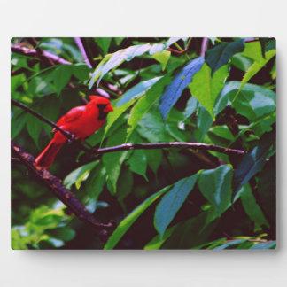 Red Cardinal Photo Plaque
