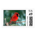 Red Cardinal Postage Stamps