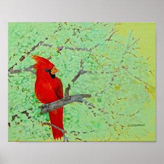 'Red Cardinal' poster
