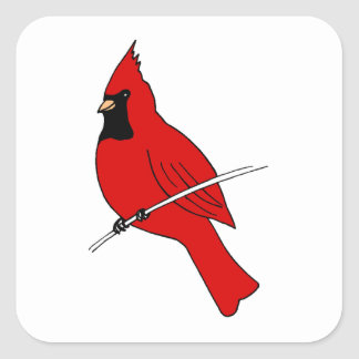 Red Cardinal Square Sticker