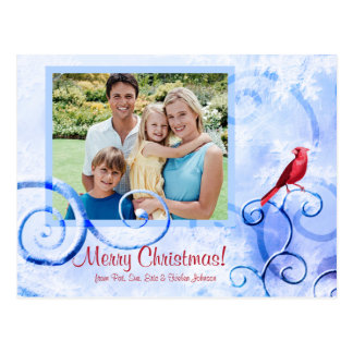Red Cardinal & Swirls: Photo Christmas Postcard