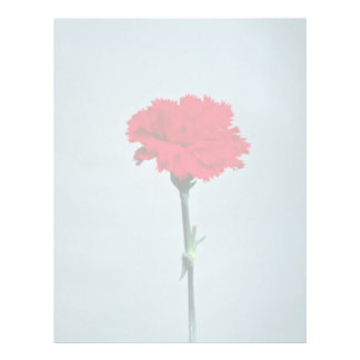 Red carnation flowers letterhead