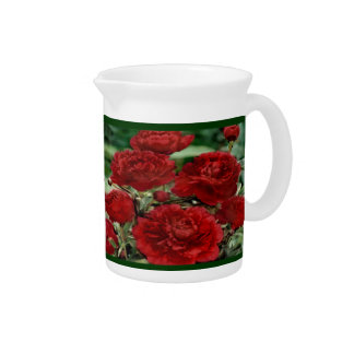 Red Carnation Flowers Pitcher