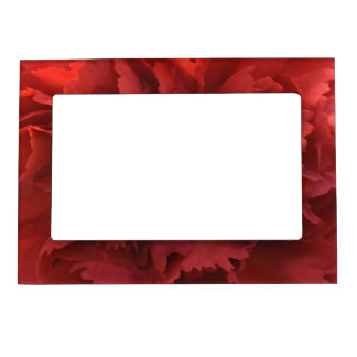 Red Carnation Picture Frame
