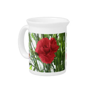 Red Carnation Pitcher