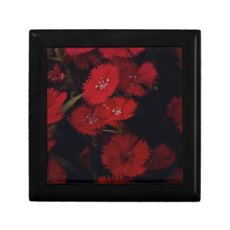 red carnations jewelry box