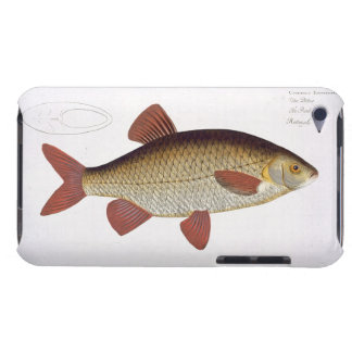 Red Carp (Cyprinus Erithrophthalmus) plate I from iPod Touch Case-Mate Case