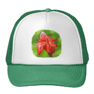 Red Carribean Rose Exotic Flower Hats