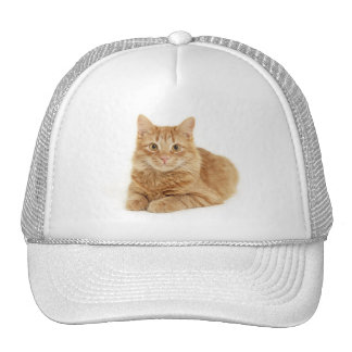 Red cat mesh hats