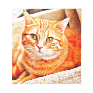 Red Cat Notepad