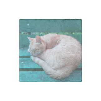 Red Cat Sleeping on Bench 2 Stone Magnet