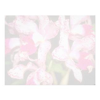 Red Cattleya flowers Letterhead