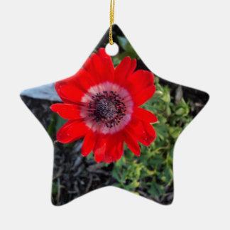 Red Ceramic Ornament