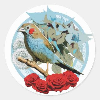 Red Cheeked Cordon Bleu Finch Classic Round Sticker