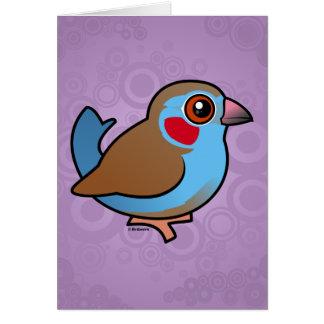Red-cheeked Cordonbleu Card