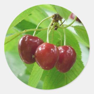 red cherries classic round sticker