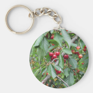 Red cherries on tree in cherry orchard keychain