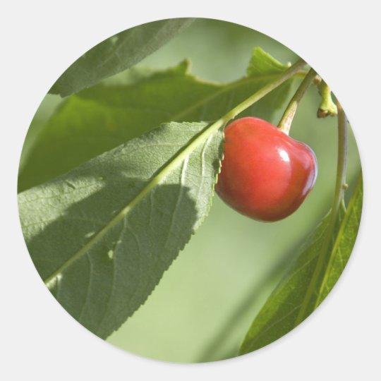 red cherry classic round sticker