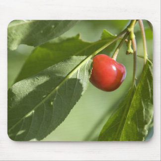 red cherry mouse pads