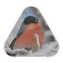 Red Chested Bird in Frosted Tree Speaker