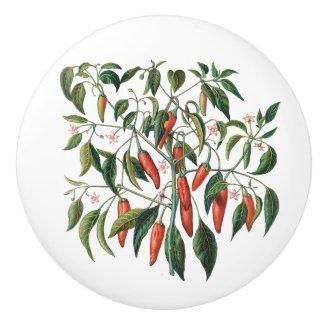 Red Chili Peppers Botanical Round Knob