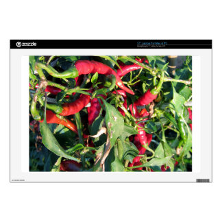 Red chili peppers hanging on the plant decals for laptops
