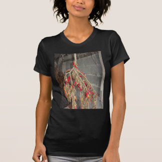 Red chili peppers hanging to dry on brick wall T-Shirt