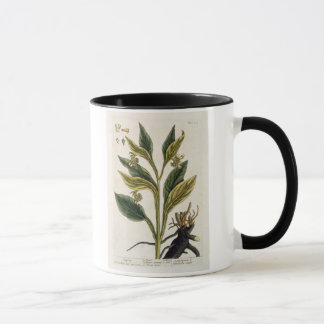 Red Chilli (colour engraving) Mug