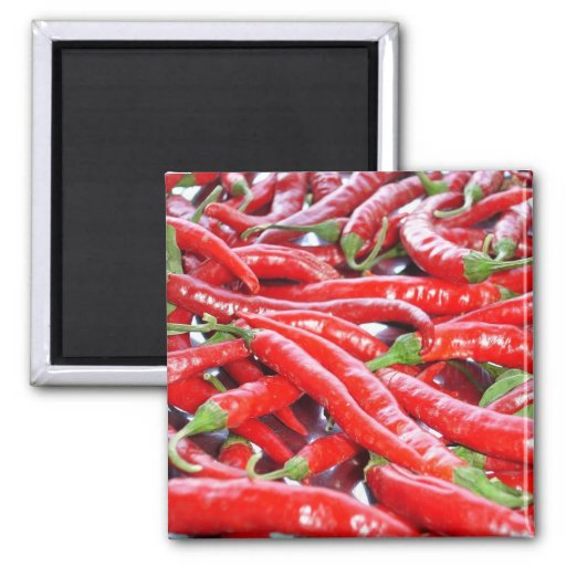 Red Chilli Peppers 2 Inch Square Magnet