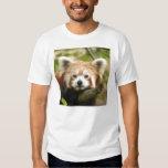 red-chinese-panda10x10 t shirts