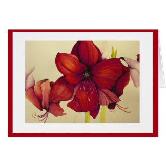 Red Christmas Amaryllis Painting Red Border Card
