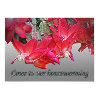 Red Christmas Cactus Housewarming Invitation