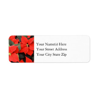 Red Christmas Poinsettia Flowers Label