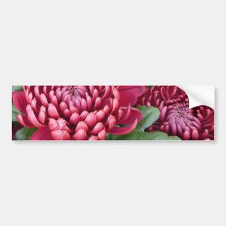 Red Chrysanthemums Bumper Sticker
