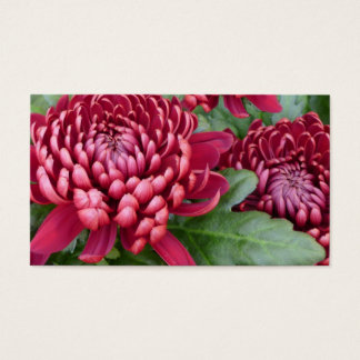 Red Chrysanthemums Business Card