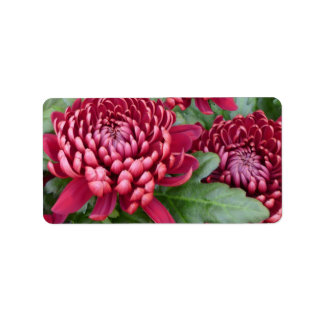 Red Chrysanthemums Labels
